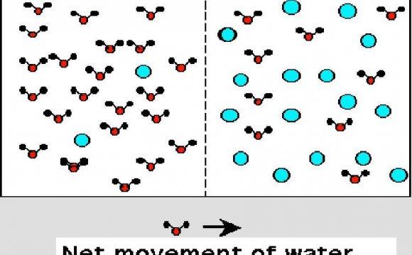 Plasma Molecules Image osmosis