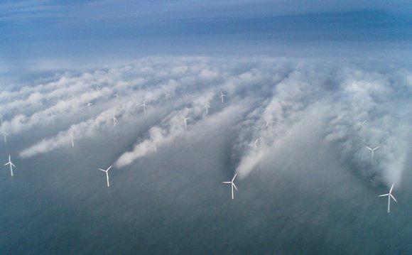 The Horns Rev offshore wind