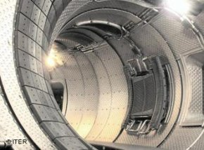 In a tokamak, blanket modules coat the inside of the chamber and directly face the hot plasma